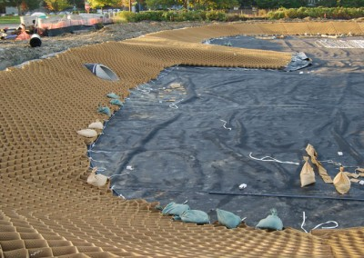 Detention pond geogrid for Design of waste stabilization pond systems